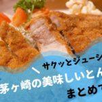 茅ヶ崎でおすすめのとんかつ屋さん7選!サクッとジューシーな極上豚カツ!